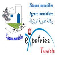 contact@zitounaimmobilier.com